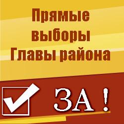 Прямые выборы Главы района